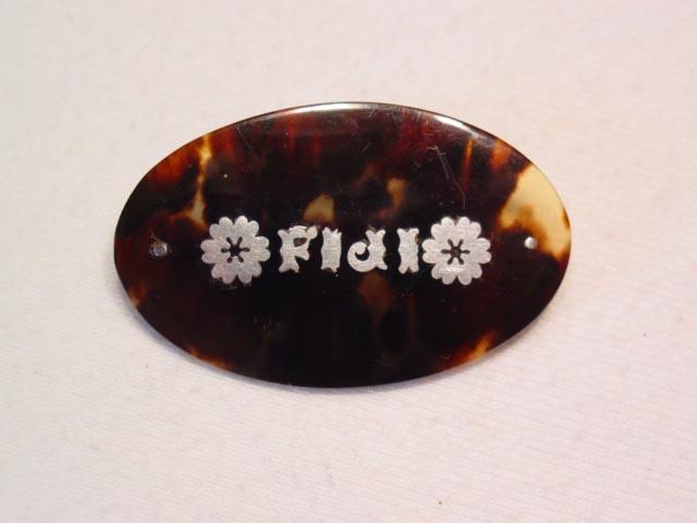Tortoise Shell Fiji Pin