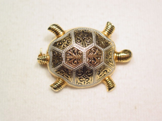Spanish Turtle Pin