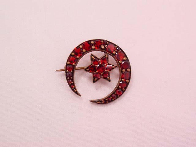 Bohemian Garnet Moon and Star Pin
